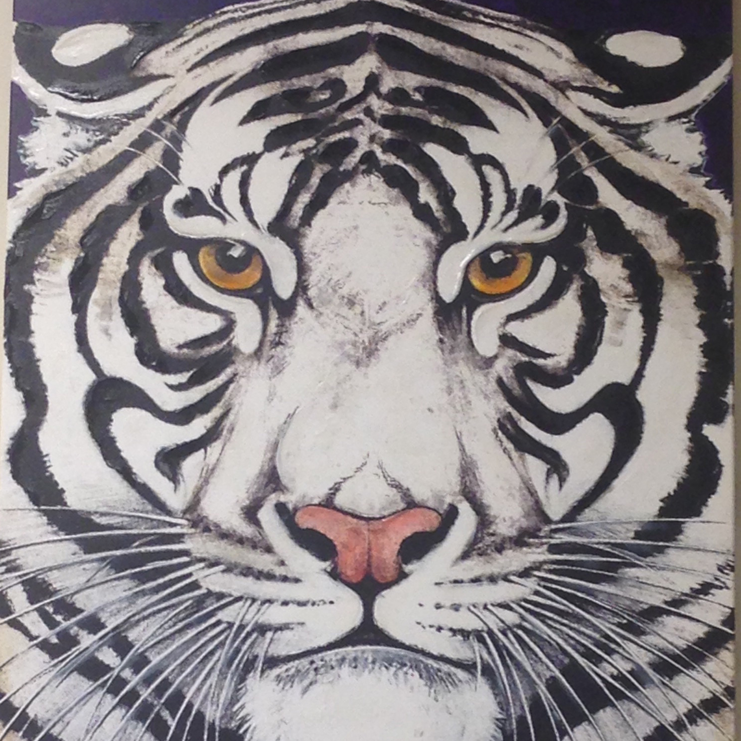 Image of Tiger mascot face