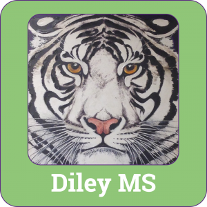Link to Diley Middle School's Information